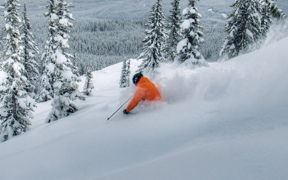 Skier at Marmot Basin, Canada